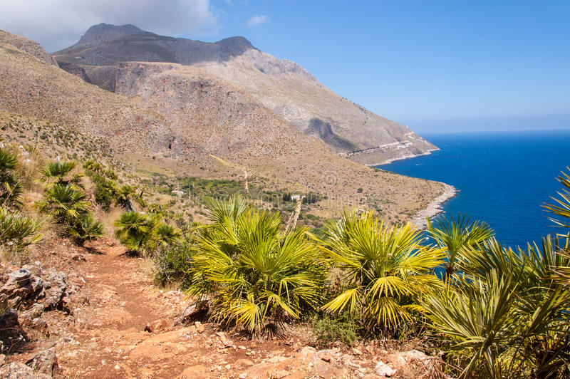 Path and small palm trees with barren mountains and blue sea stock photography