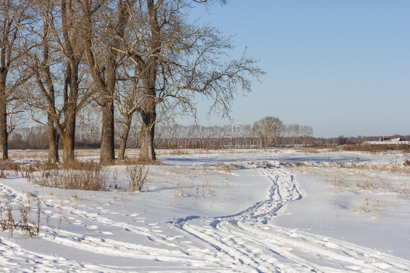 Path in the snow in the field. PathPath in a field near the Russian village near the forest. Snow-covered fields. in the snow in the field stock photography