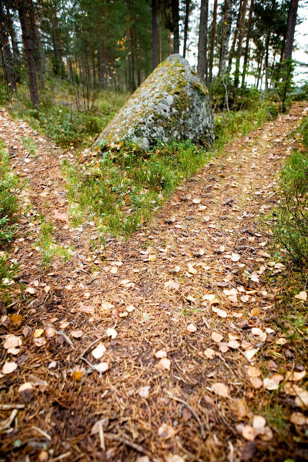 Path Split royalty free stock images