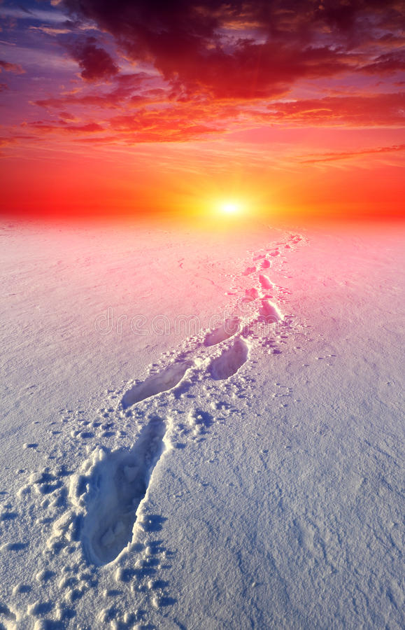 Download Path In Steppe On Sunset Background Stock Photo - Image: 39851624