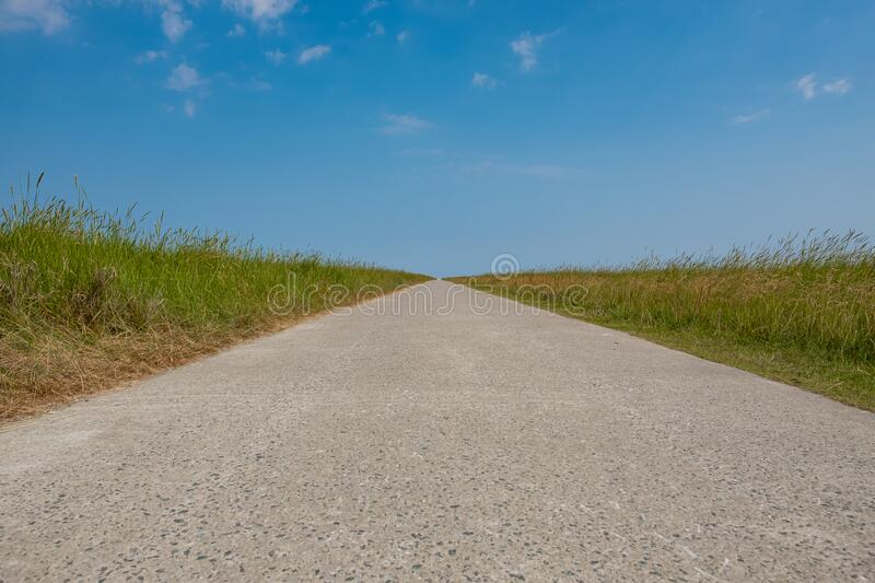 Straight path through the field royalty free stock images