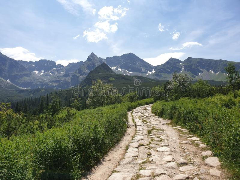 A path in Tatry mountains. A path in Tatry royalty free stock photography