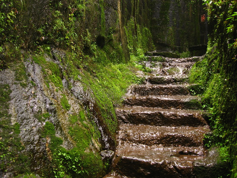 Download Path To Ancient Fort Lohgad-IV Stock Photo - Image of built, greenery: 3198312
