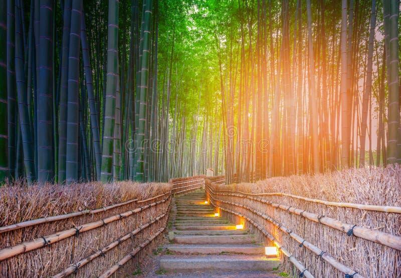 Path to bamboo forest at Arashiyama, Kyoto, Japan stock photos