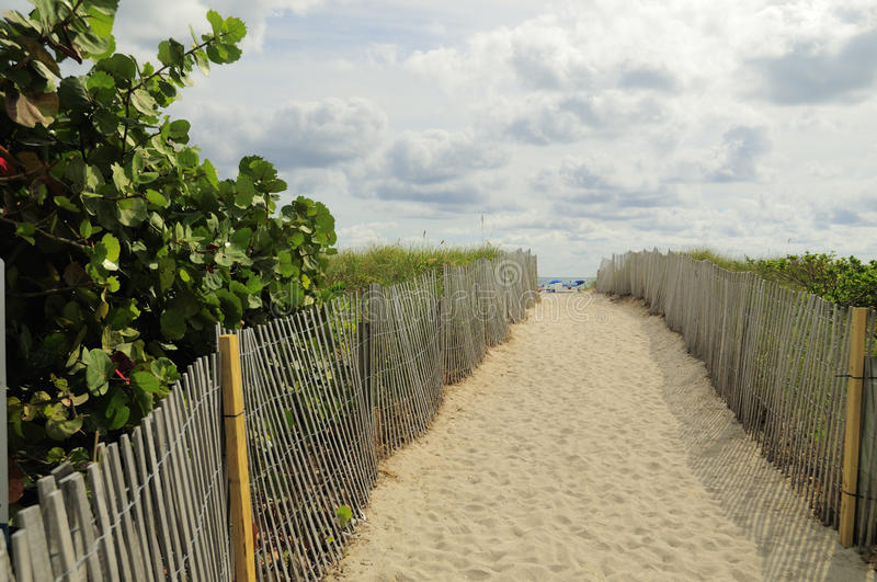 Download Path to beach stock photo. Image of fence, caribbean - 12769040