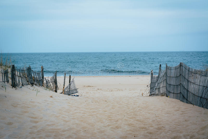 Path to the beach at Cape Henlopen State Park, in Rehoboth Beach. Delaware royalty free stock images