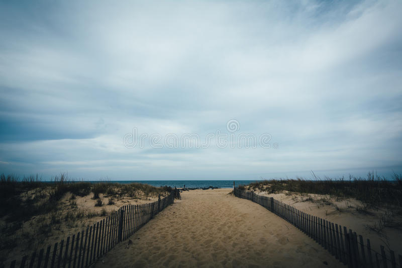 Path to the beach at Cape Henlopen State Park, in Rehoboth Beach. Delaware stock image