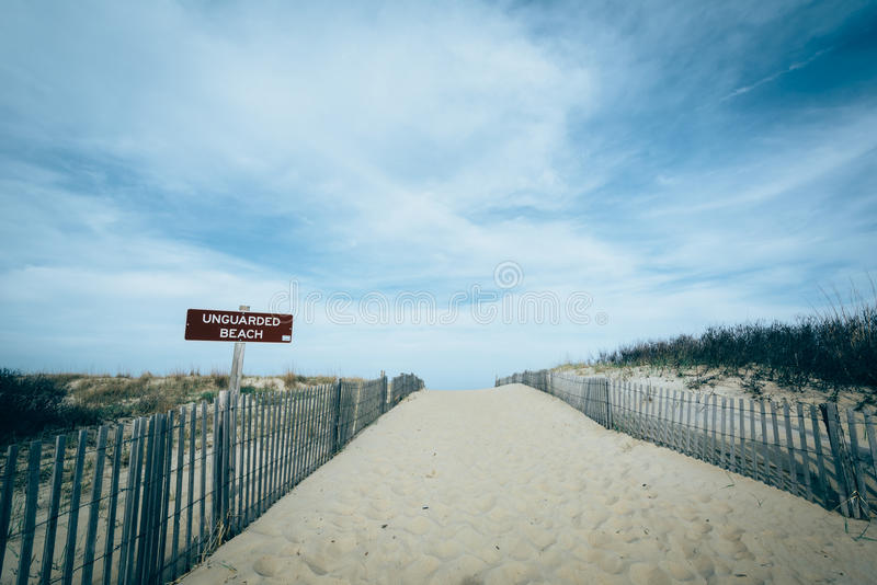 Path to the beach at Cape Henlopen State Park, in Rehoboth Beach. Delaware royalty free stock photos