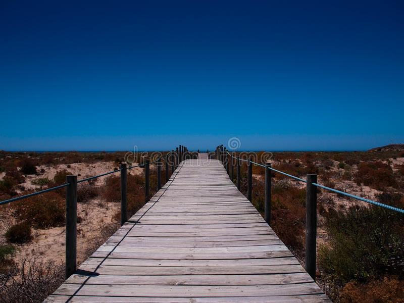 Path to the beach. Wooden path to the beach royalty free stock image