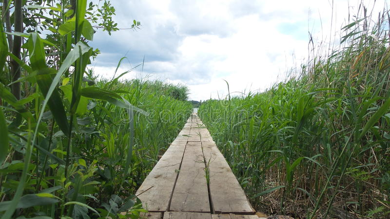 Path to the bridge for fishing stock image