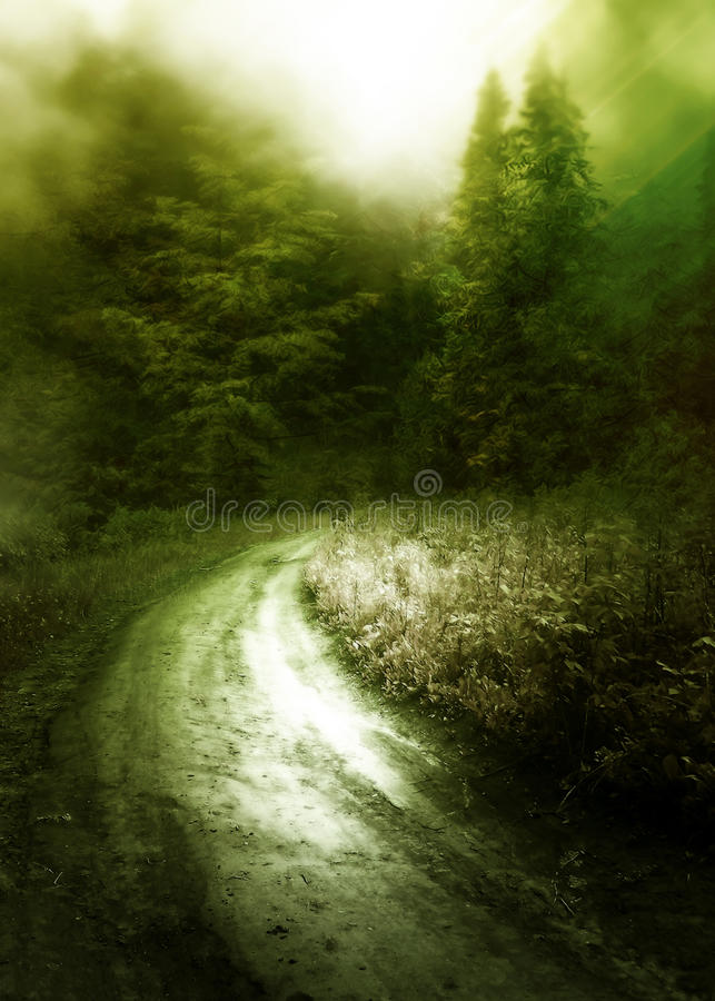 Download Path to a forest stock illustration. Illustration of mystical - 24231605