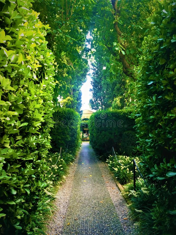Path to heaven and light royalty free stock photo