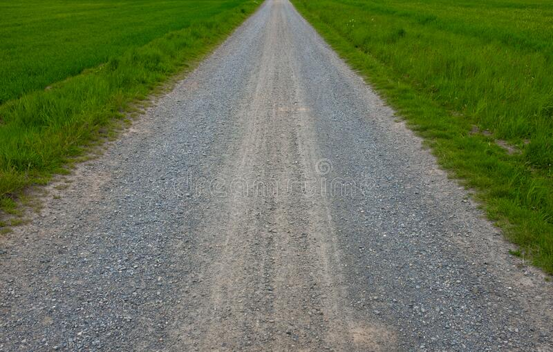 Path through the middle of the field royalty free stock photography