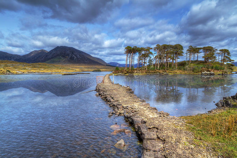 Download Path To The Island On Lake Of Connemara Stock Photo - Image: 24529164