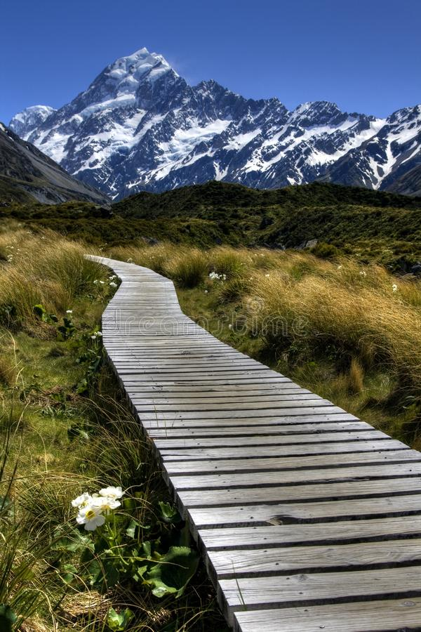 Free Path To Mt Cook Royalty Free Stock Photography - 16550137