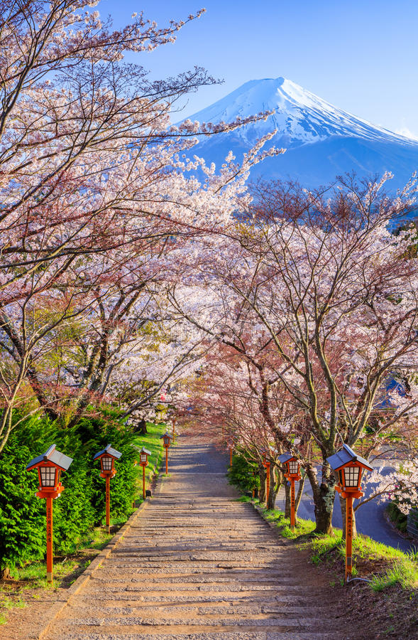Path to Mt. Fuji in spring, Fujiyoshida, Japan royalty free stock image