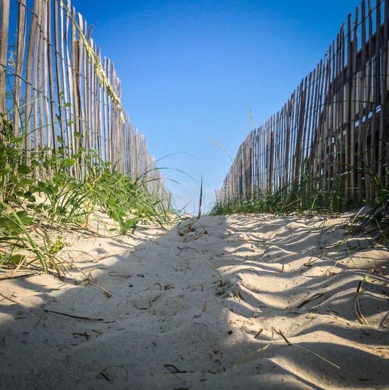 A Path to the Ocean. Through the dunes. Wrightsville Beach, NC stock photos