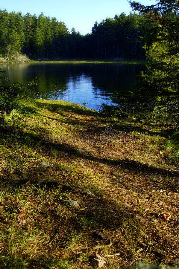 Download Path To Redemption stock image. Image of calming, reflections - 104923