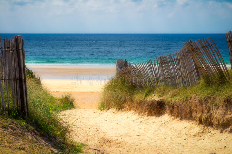 Path to sand beach with beachgrass. Way to the wide sandy beaches of the Atlantic. royalty free stock photo