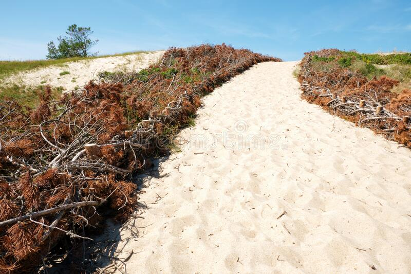 Path to the sea in sandy dunes in bright summer day stock images