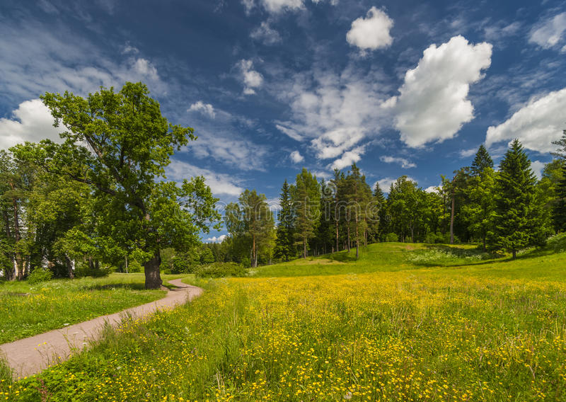 Path to spring park. Beautiful spring park with yellow flowers, green trees and ground path under picturesque cloudscape royalty free stock image
