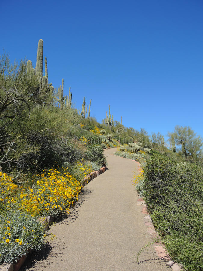 Path to Tonto National Monument stock images