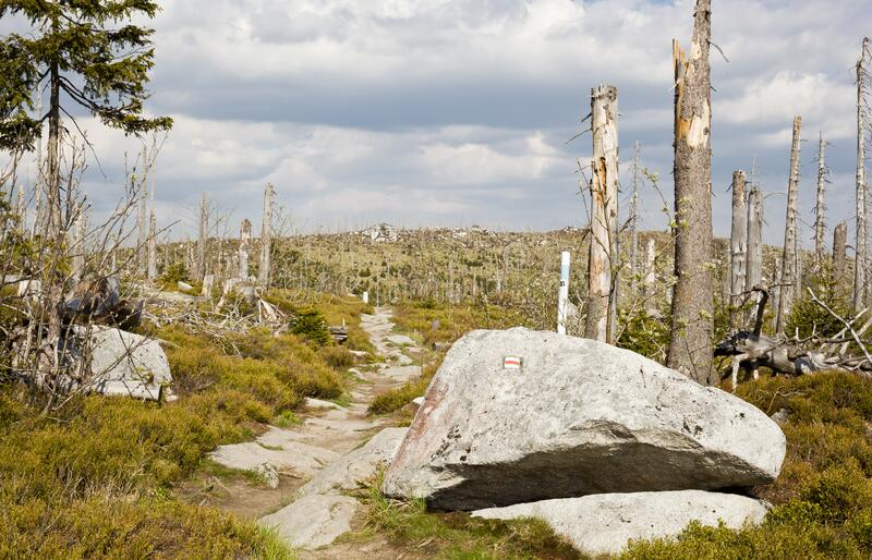 The path to Tri-border and the mountain top Plechy - Sumava national park - Czech republic royalty free stock photography