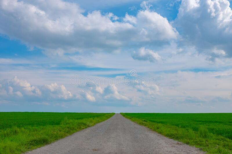 A path between two fields stock image
