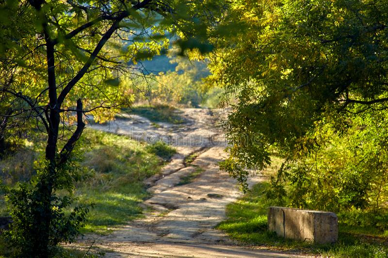 The path up the hill royalty free stock image
