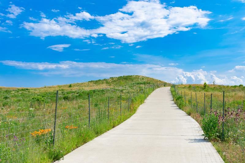 Path up a Hill in a Field with Native Plants and a Blue Sky at Northerly Island in Chicago during the Summer stock photo