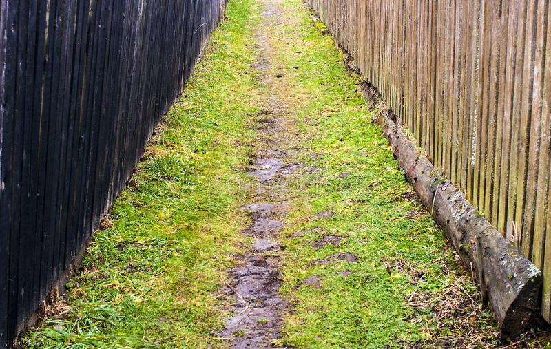 The path in the village stock photography