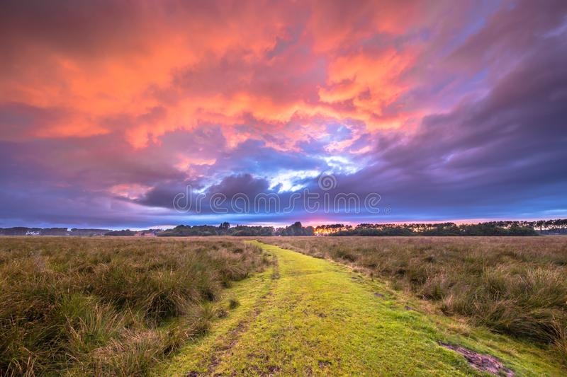 Path through Wild natural landscape under amazing sky. Rural Path through nature reserve under amazing sky during Sunset, trail leading to Enlightment royalty free stock photo