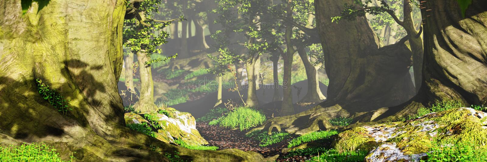 Path through the woods, magical sunlight in fantasy forest royalty free stock images
