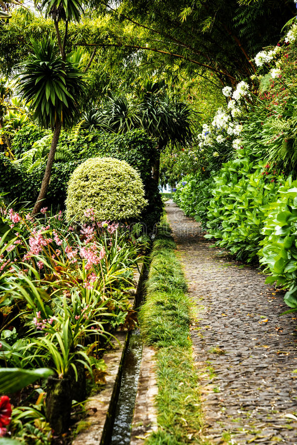 Pathway in a Beautiful Garden at Monte above Funchal Madeira. This wonderful garden is at the top of the cablecar from the seafront in Funchal. It is filled with royalty free stock photo