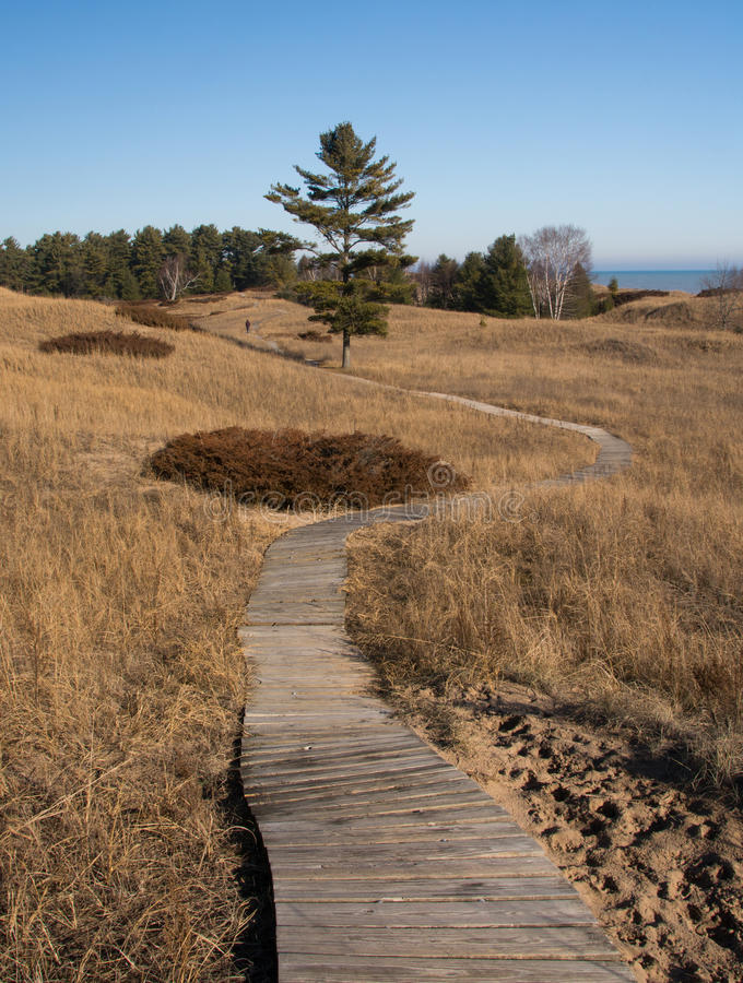 Pathway. A boardwalk path winds its way through the protected dunes at a Wisconsin State Park on the Lake Michigan shore stock photography