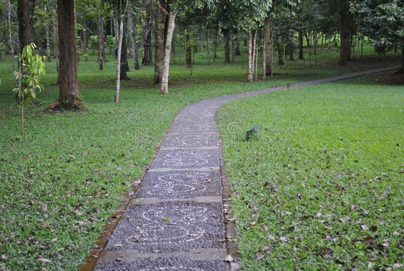 The pathway in the botanical garden of Bedugul Bali stock photos