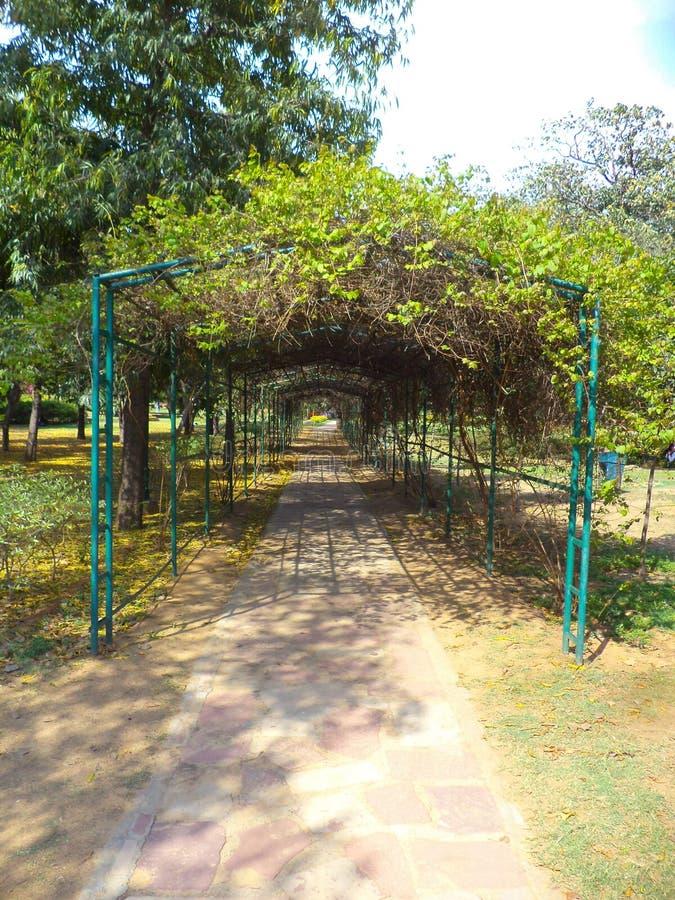 Buddha Garden New Delhi Photos Free Royalty Free Stock Photos From Dreamstime