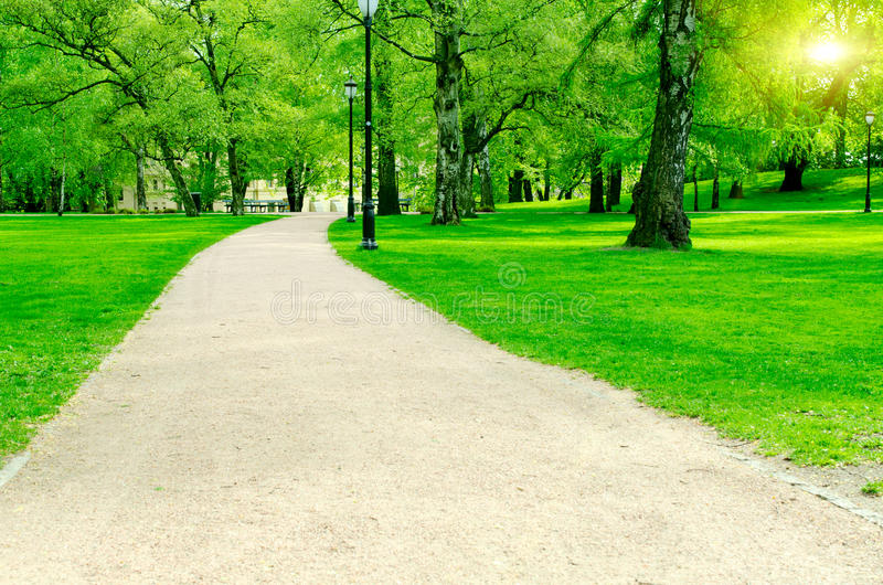Pathway in city garden royalty free stock photography