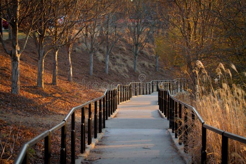 Pathway. In Columbus Georgia near Chattahoochee river royalty free stock image