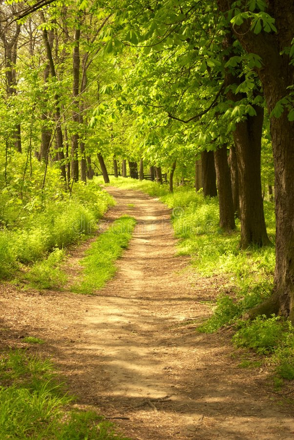 Pathway in countryside royalty free stock photos