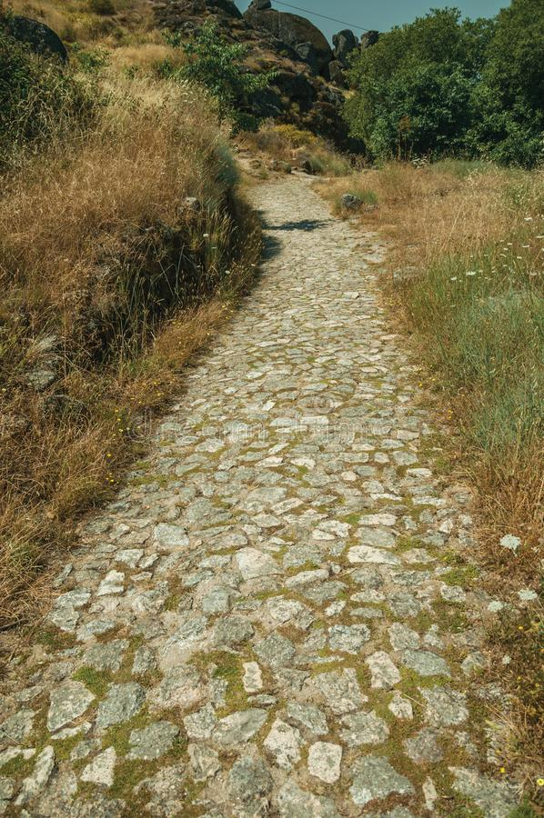 Pathway covered by bushes and rocks near Monsanto royalty free stock photo