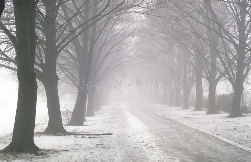 Pathway in the fog stock images