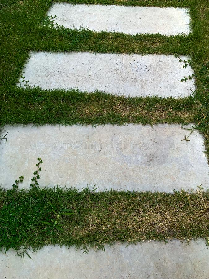 Pathway in the garden, stepping stones in the grass lawn royalty free stock images