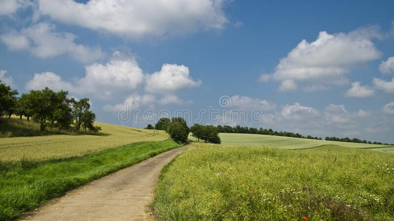 Pathway in Between of Green Grass Field royalty free stock photography