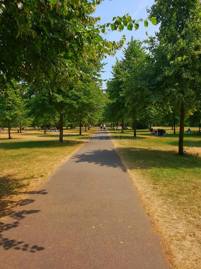 Pathway in kensington. Gardens surrounded by beautiful trees makes you enjoy life stock photo