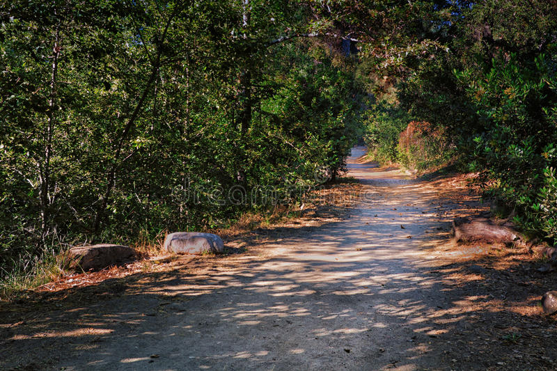 Download Pathway of Life stock image. Image of path, nobody, trail - 25580397