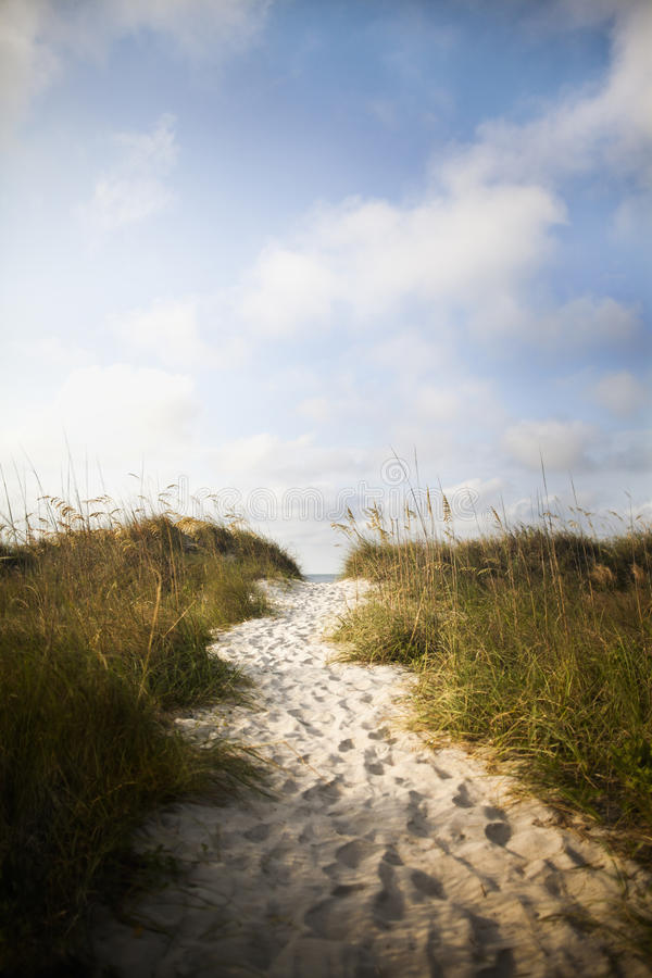 Pathway in sand dune to beach. On vacation stock photos