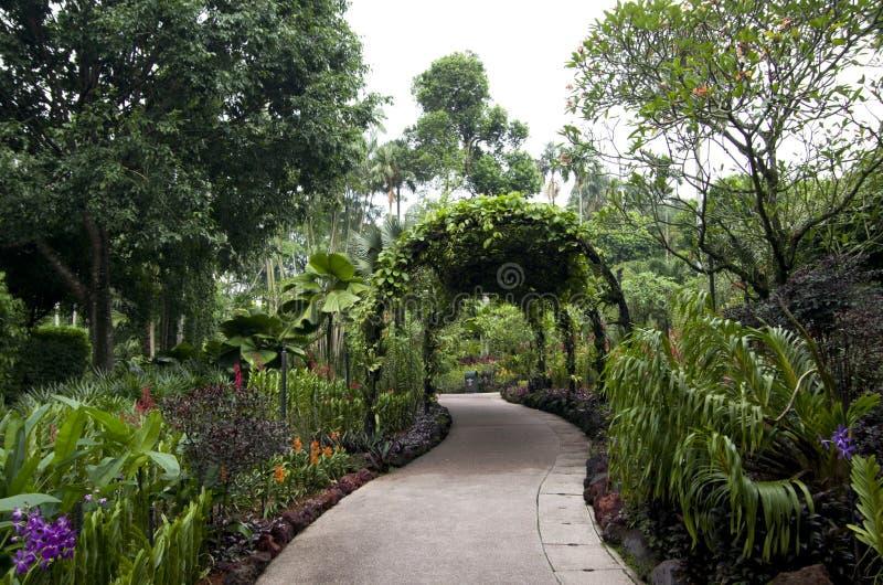 Pathway singapore botanic garden royalty free stock images