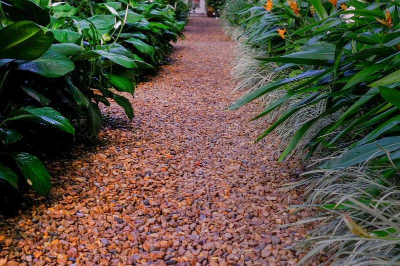 Pathway with small stones in garden stock image