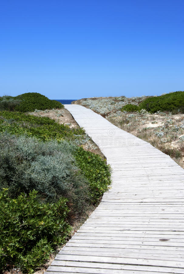 Download Pathway  to the sea stock photo. Image of country, pathway - 25754256